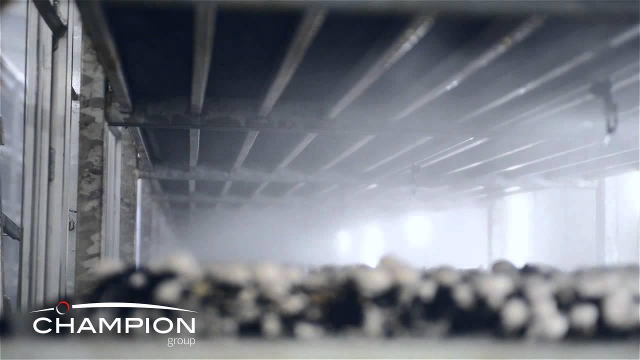 Mushroom Farming Growing Equipment Watering System Youtube