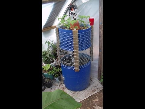 Small Aquaponics System DIY