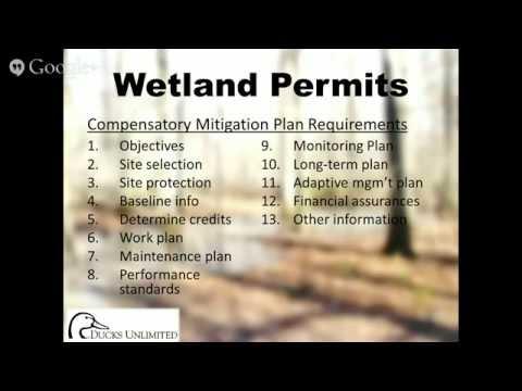 Permitting Process Wetlands Wetland Permits