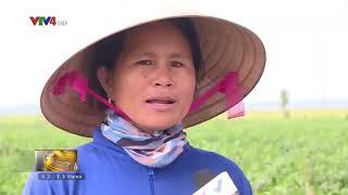 Bản tin thời sự tiếng Việt 12h - 21/04/2018
