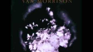 Watch Van Morrison Youth Of 1000 Summers video