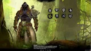 Guild Wars 2 #1: Игра началась!