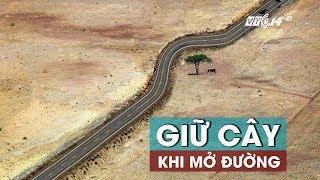 (VTC14)_Giữ cây khi mở đường: Dễ hay khó?
