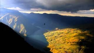 Bach / Marcello Adagio - Concerto in D minor