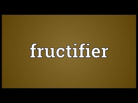 Header of fructifier
