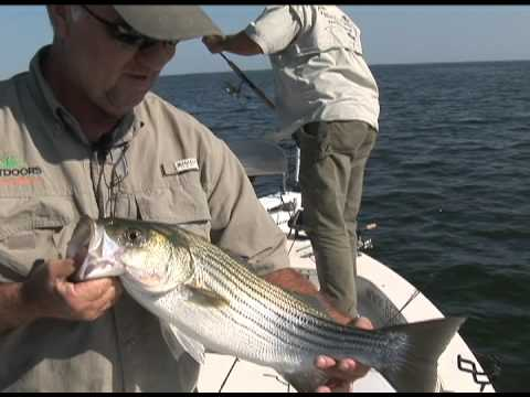 Crappie Fishing at Santee Cooper Part 1