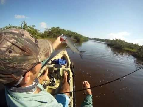 Inshore Kayak Fishing Snook, Trout, Redfish, Tarpon
