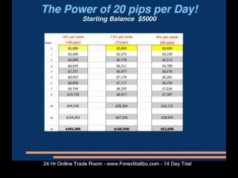 Make 20 pips per day forex