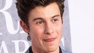 Shawn Mendes Dedicates 'If I Can't Have You' To Camila Cabello?