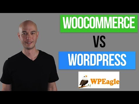 Woocommerce vs Blog for Amazon Affiliate Niche Site (With Alex Cooper of WP Eagle)