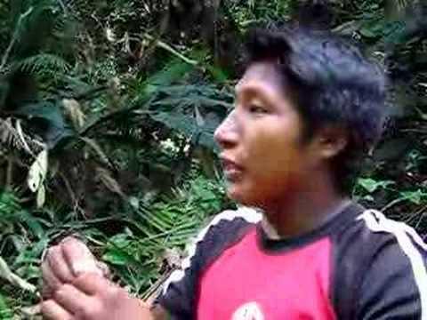 Indio y Guasano en el Amazonas Venezolano