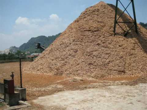 Brazil Biomass and Renewable Energy Wood Chips