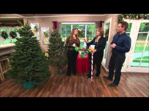 Shirley Bovshow's Christmas Tree Buying Tips