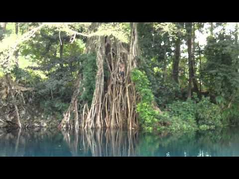 Tarzan Blue hole.MP4