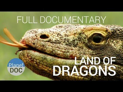 Full Doentary Komodo Dragon Land Of Dragons Planet Doc Full