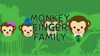 Finger Family Song - Monkey Family - Anivision TV