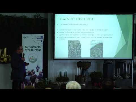 Kertészeti szeminárium 2019. november 19. Változások a technológiákban 5.