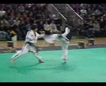 ITF Taekwondo Demonstrations Image 1