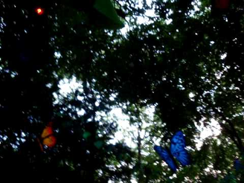 download lagu Tribe Forest Frog 1 gratis