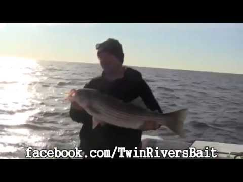 Sandy Hook Striper Fishing - TRB