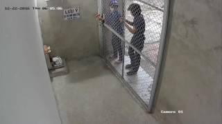 clip ghi hình 3 tên trộm bẻ khóa nhà vào ăn trộm