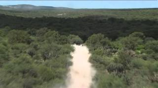 Stage 12 - Car/Bike - Stage Summary - (Termas Rio Hondo - Rosario)