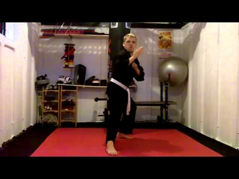 Kokutsu Dachi - Back Stance video