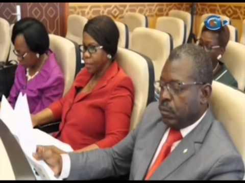 RTG/Audition au palais de Sénat du ministre délégué à l'économie Mme Marie BILOGHE