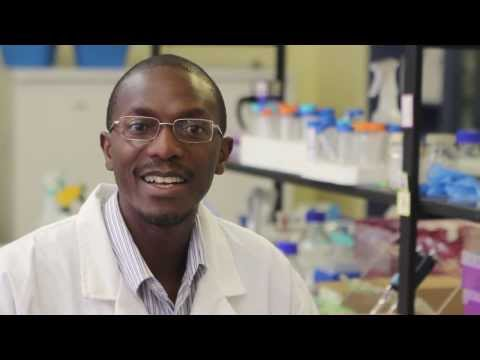 Meet a CSIR systems biologist who specialises in malaria research
