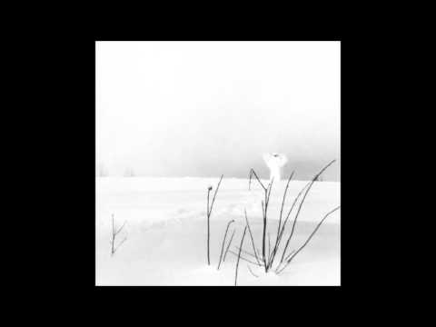 Timo Rautiainen Trio Niskalaukaus - In Frostigen Tälern