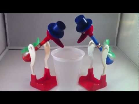 Drinking Bird Experiment The Incredible Drinking Bird
