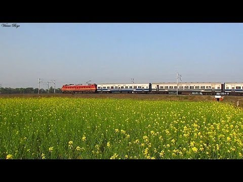 [hd] Wap-4 Powers The Patna Janshatabdi On A Winter Afternoon ! video