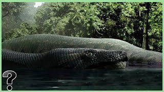 What If The Titanoboa Snake Didn't Go Extinct?