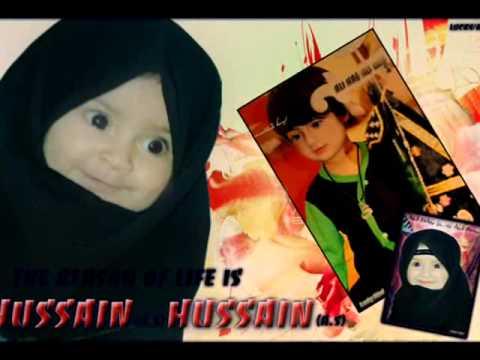 Farhan Ali Waris Noha 2011 - Sari Duniya Hussain (as) Kary video