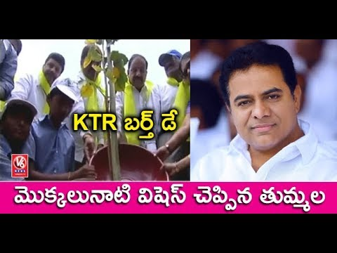 KTR Birthday: Minister Thummala nageshwar Rao Plants Saplings At Banjara Hills | V6 News