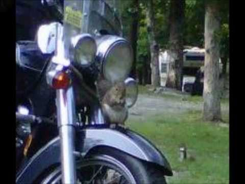Motorcycle Camping Trip to Cheaha State Park, Alabama