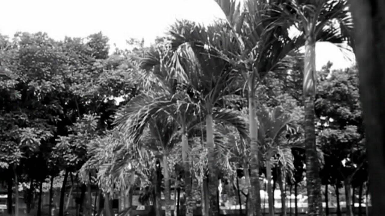 noli me tangere chapter 11 to 16 Noli me tangere jump to navigation jump to search layunin ng kabanata  huling binago ang pahinang ito noong 16:32, 14 mayo 2018.