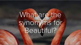 Best synonyms for Beautiful