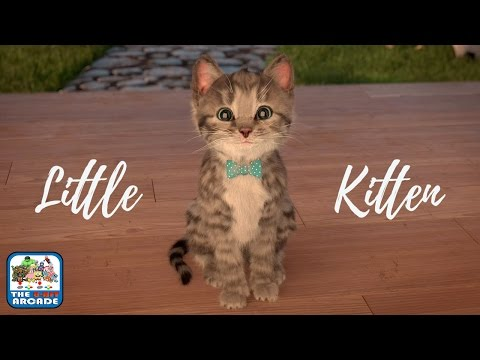 Little Kitten: My Favorite Cat - Every Child's Dream, A Cheeky & Adorable Pet (iOS/iPad Gameplay) streaming vf