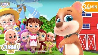 Bingo Dog Song | Number Song | Education preschool learning Nursery Rhymes  by Jugnu Kids