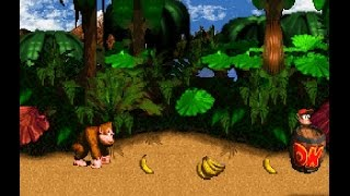 Play Donkey Kong Country 4 The Kongs Return : demo2