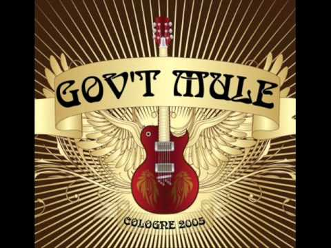 Govt Mule - Drivin Rain