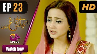 Drama | Is Chand Pe Dagh Nahin - Episode 23 | Aplus ᴴᴰ Dramas | Zarnish Khan, Firdous Jamal