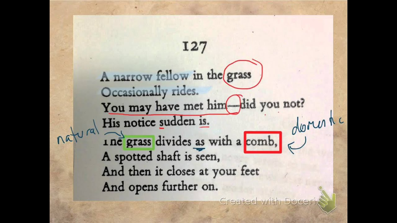 a literary analysis of a narrow fellow in the grass by emily dickinson