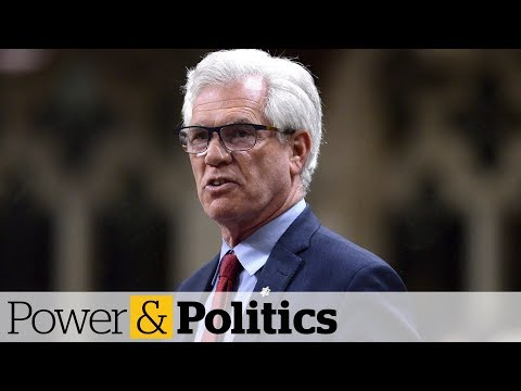 Beyond NAFTA: Diversifying Canada's trade | Power & Politics