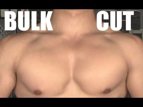 Should You BULK or CUT?