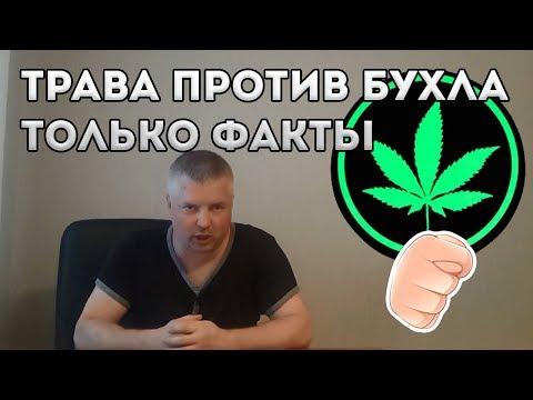 Марихуана против бухла  Наука ПЛЮС И МИНУС