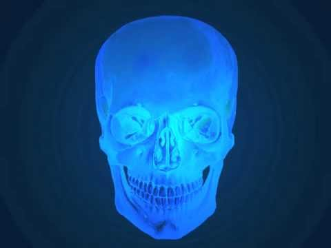Skull Animation thumbnail
