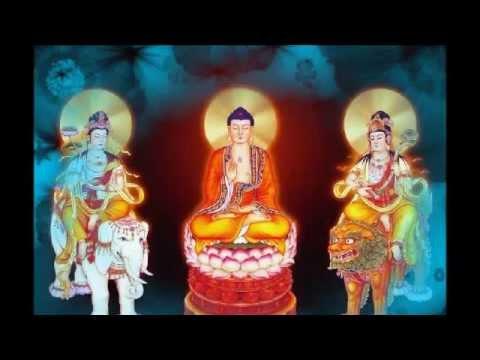 Diệu Âm - Niệm Phật Hộ Niệm Vãng Sanh Vấn Đáp - 4/24