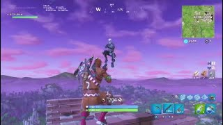 *EXPOSING* a Fake Defualt and Finding a Skull Trooper in Playground!